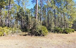 Blazing Ridge Ct. Jacksonville, Florida 32219