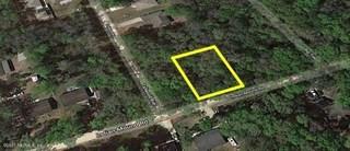 Indian Mound Rd. Satsuma, Florida 32189