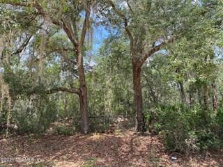Canine St. Interlachen, Florida 32148