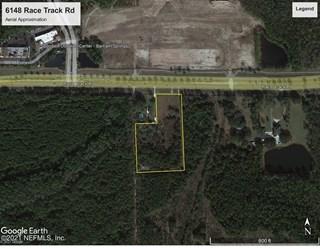 Race Track Rd. St Johns, Florida 32259