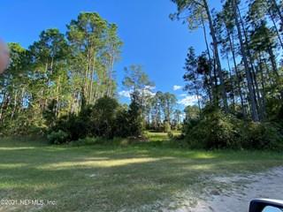 White Pine Ln. Georgetown, Florida 32139