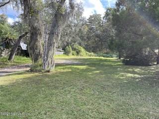 Orange Tree Rd. East Palatka, Florida 32131