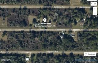 Palm Way. Georgetown, Florida 32139